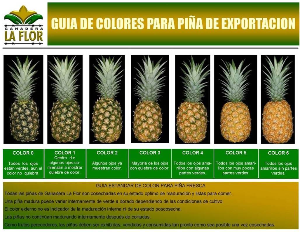 pineapple express stream